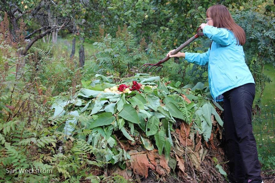 N uusi komposti syyskuun alussa
