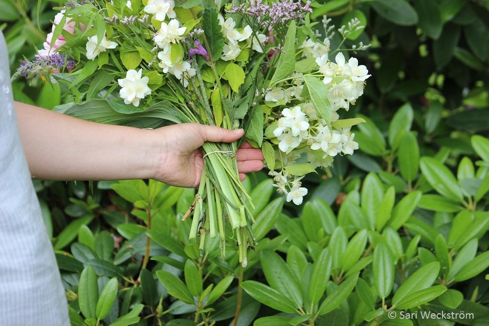 0 kukkakimppu pihan kukista, sidotaan kuminauhalla