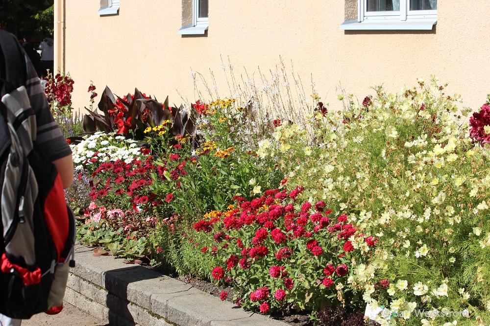 00 Lepaa ja Neko, Fleuroselect-ryhmäkasvien näyttelyalue