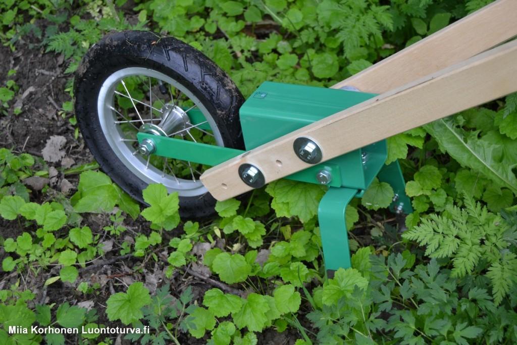 Nekon pyöröharalla jättiputken siementaimien torjuntaa