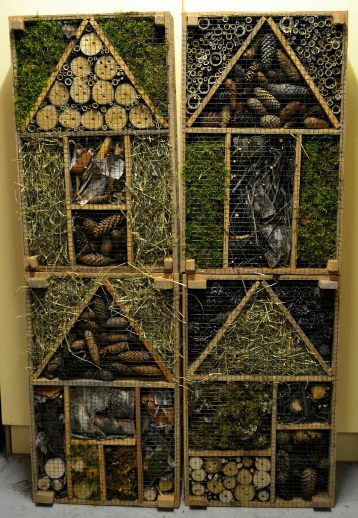 Hyönteishotellit odottaa asukkaita