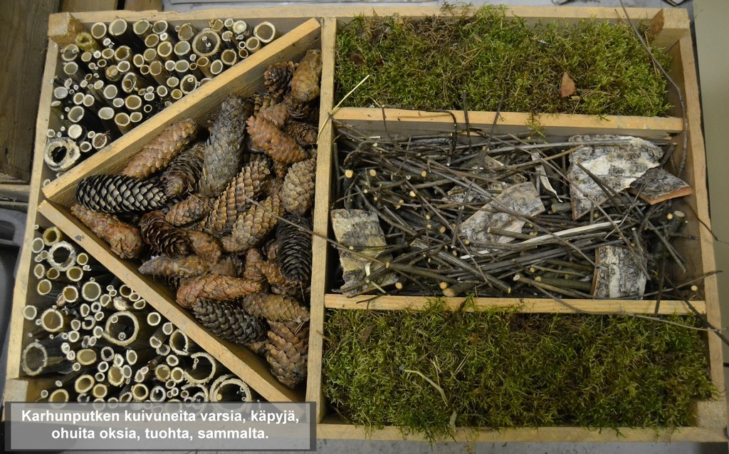 hyönteishotellin täyttöön käy moni luonnon materiaali