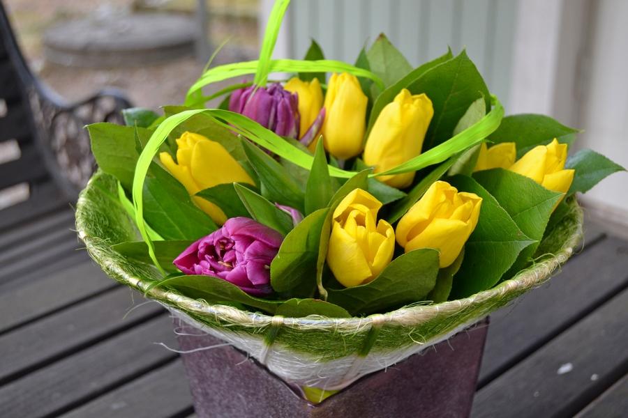 Tuloksena keväinen tulppaanikimppu