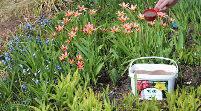 Aika kevätlannoituksen, uudella Neko Vegamix yleislannoitteella