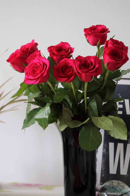 0 Ruusut ja leikkokukat kestää pidempään Neko Leikkokukkavirkisteellä, Ruusukimppu maljakossa