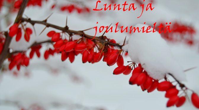 Lunta ja joulumieltä