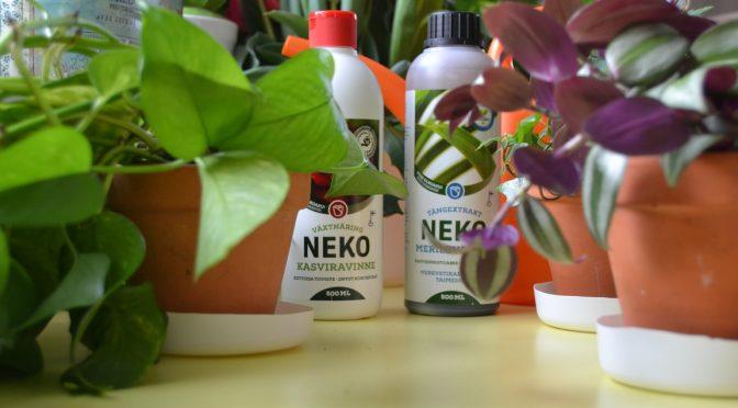 Viherkasvien lisääminen